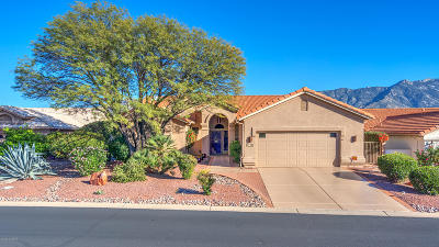 Saddlebrooke, Saddlebrooke Ranch Single Family Home For Sale: 37397 S Canyon Side Drive