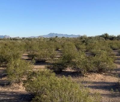 Residential Lots & Land For Sale: 17411 W White Eagle Road
