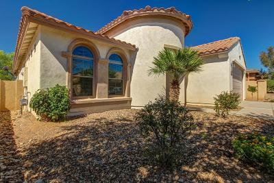Sahuarita Single Family Home For Sale: 799 W Camino Tunera