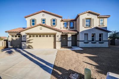 Pima County Single Family Home Active Contingent: 8137 W Young Eagle Court