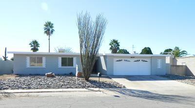 Tucson Single Family Home For Sale: 9280 E Holmes Street