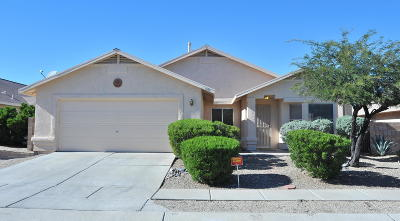 Tucson Single Family Home For Sale: 1191 N Chamberlain Place