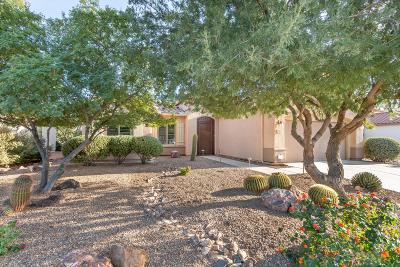 Tucson Single Family Home Active Contingent: 7561 W Mystic Sky Lane