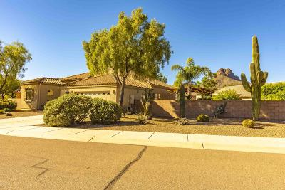 Tucson Single Family Home Active Contingent: 7995 N Rondure Loop
