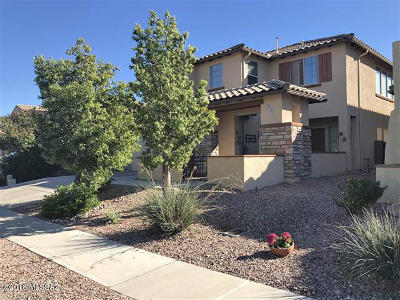 Pima County, Pinal County Single Family Home For Sale: 1249 W Montelupo Drive