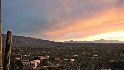 Tucson Residential Lots & Land For Sale: 11965 E Ponce De Leon #27
