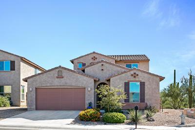 Marana Single Family Home For Sale: 12532 N Summer Wind Drive
