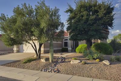 Single Family Home Active Contingent: 2361 E Cargondera Canyon Drive