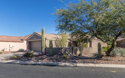 Marana Single Family Home For Sale: 13730 N Wild Hazel Lane
