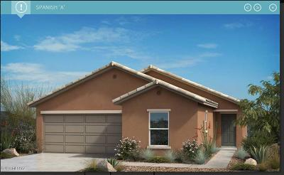 Tucson Single Family Home For Sale: 8835 N Hardy Preserve Loop