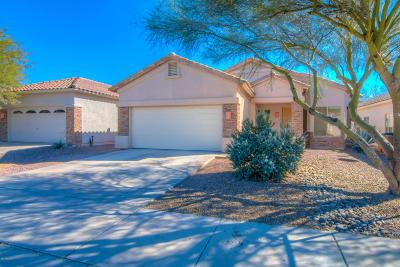 Tucson Single Family Home For Sale: 8858 N Treasure Mountain Drive