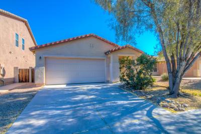 Tucson Single Family Home For Sale: 9296 N Centipede Avenue