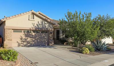 Tucson Single Family Home For Sale: 8930 N Treasure Mountain Drive