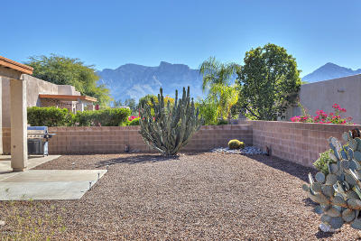 Oro Valley Single Family Home Active Contingent: 573 Pyramid Point Court