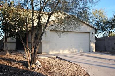 Tucson Single Family Home For Sale: 6297 S Earp Wash Lane