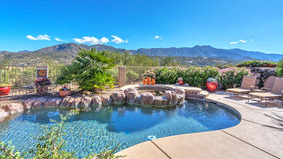 Saddlebrooke, Saddlebrooke Ranch Single Family Home For Sale: 37133 S Ocotillo Canyon Drive