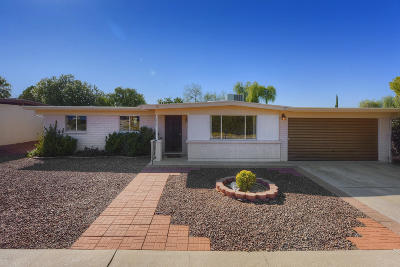 Tucson Single Family Home For Sale: 9450 E Palm Tree Drive