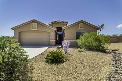 Green Valley Single Family Home For Sale: 1085 W Placita Vargas