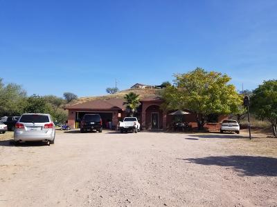 Rio Rico Single Family Home For Sale: 871 Circulo Guerrero