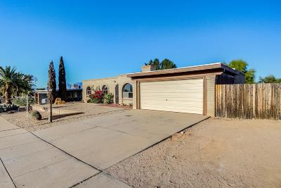 Tucson Single Family Home For Sale: 2357 S Tree Moss Avenue
