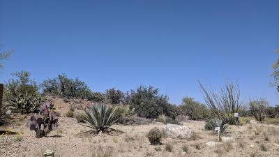 Green Valley Residential Lots & Land Active Contingent: 878 W Camino Encanto #1