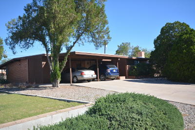 Tucson Single Family Home For Sale: 3202 W Calle Fresa