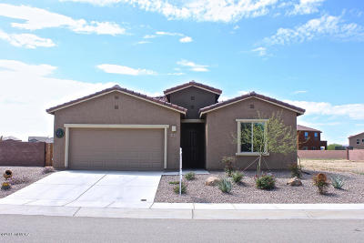 Sahuarita Single Family Home For Sale: 1118 E Madera Grove Lane