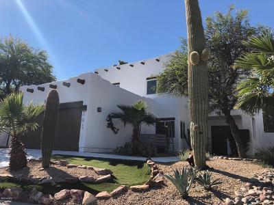 Tucson Single Family Home For Sale: 9251 N Camino De La Tierra