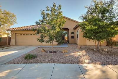 Tucson Single Family Home For Sale: 7031 W Lone Flower Drive
