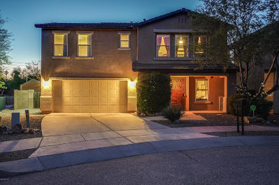Tucson Single Family Home For Sale: 3317 N River Rapids Drive