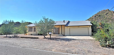 Tucson Single Family Home For Sale: 5770 S Hopdown Lane