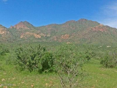 Tubac Residential Lots & Land For Sale: Guadalupe Lane
