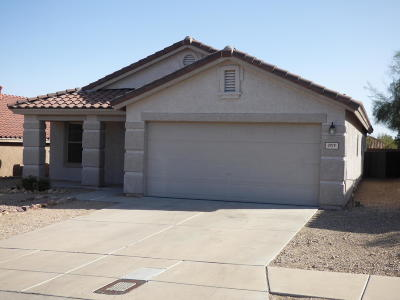 Tucson Single Family Home For Sale: 3919 W Oak Springs Trail