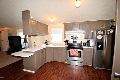 Pima County Manufactured Home For Sale: 11571 S Brandywine Lane