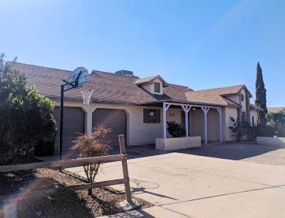Tucson Single Family Home For Sale: 3013 W Placita Maria