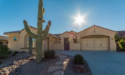 Oro Valley Single Family Home For Sale: 13679 N Tessali Way
