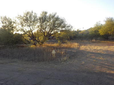 Rio Rico Residential Lots & Land For Sale: 422 Curry Street #4