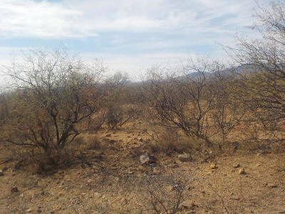 Rio Rico Residential Lots & Land For Sale: 1812 Calle Griego #1