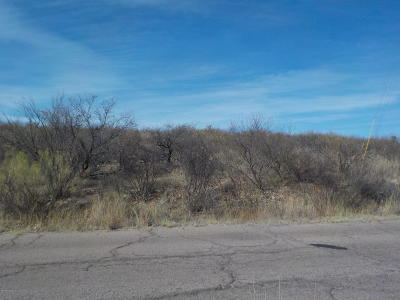 Rio Rico Residential Lots & Land For Sale: 1062 Calle Magdalena #4