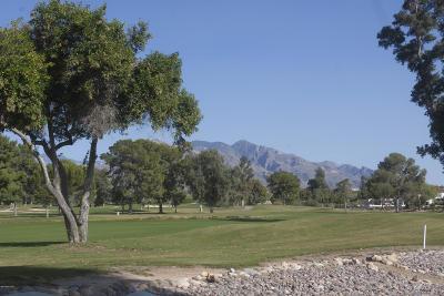 Tucson Townhouse For Sale: 2720 W Casas Drive