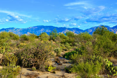 Oro Valley Residential Lots & Land For Sale: 899 Tortolita Mountain Circle #131