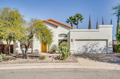 Tucson Single Family Home For Sale: 152 N Fenceline Drive