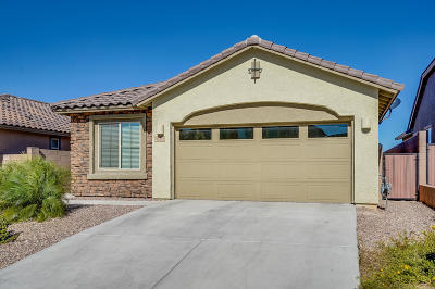 Tucson Single Family Home For Sale: 11373 E Squash Blossom Loop