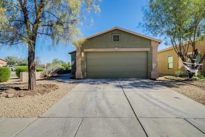Tucson Single Family Home For Sale: 6633 S Venetian Drive