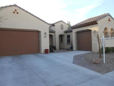Marana Single Family Home For Sale: 4645 W Placita Casa Sevilla