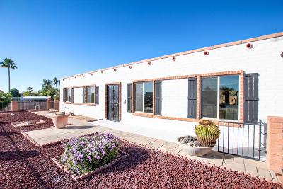 Tucson Single Family Home For Sale: 9611 E Deer Trail