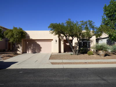 Pima County, Pinal County Single Family Home For Sale: 9129 E Lost Tree Drive