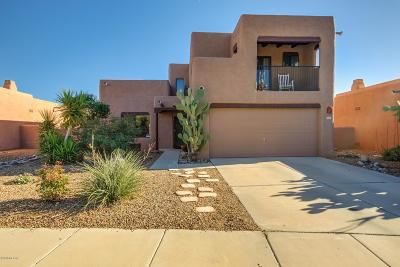 Tucson Single Family Home For Sale: 9040 N Jessy Lane