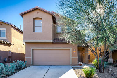 Sahuarita Single Family Home For Sale: 90 N Indian Tank Lane
