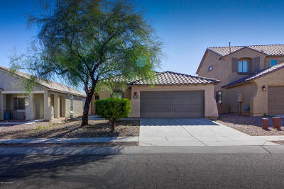 Pima County Single Family Home For Sale: 91 W Calle Priscal
